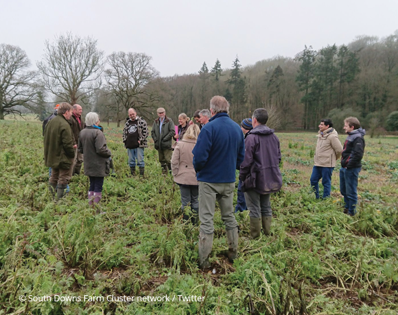 Portsmouth Water and South Downs Farmers discuss cover crop trial