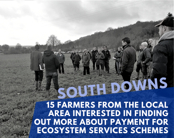 CPES South Downs Groundwater Case Study Pilot