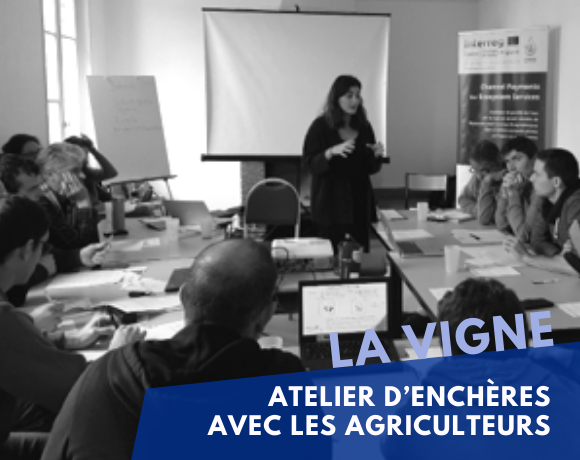 Experimental economics workshop with farmers from AAC de La Vigne