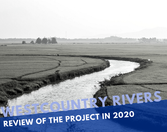 Review of the Westcountry Rivers Trust project in 2020